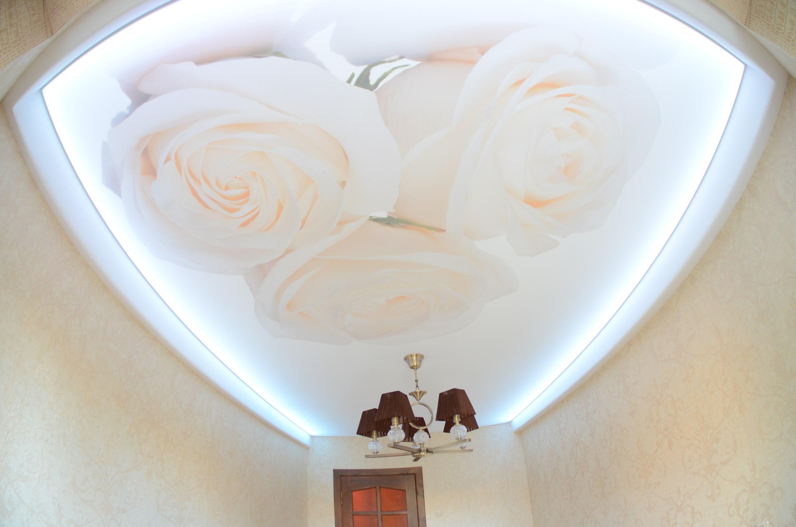 Натяжные потолки каталог фото цветы
